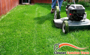 lawn-mowing-services-camden-town